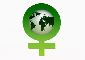 Why is environmentalism considered feminine?