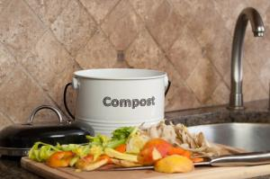 Lazy Composting: Max 10 mins per day no stink no critters