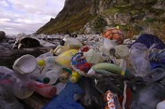 Pacific garbage patch: 6 effortless ways you can make a difference